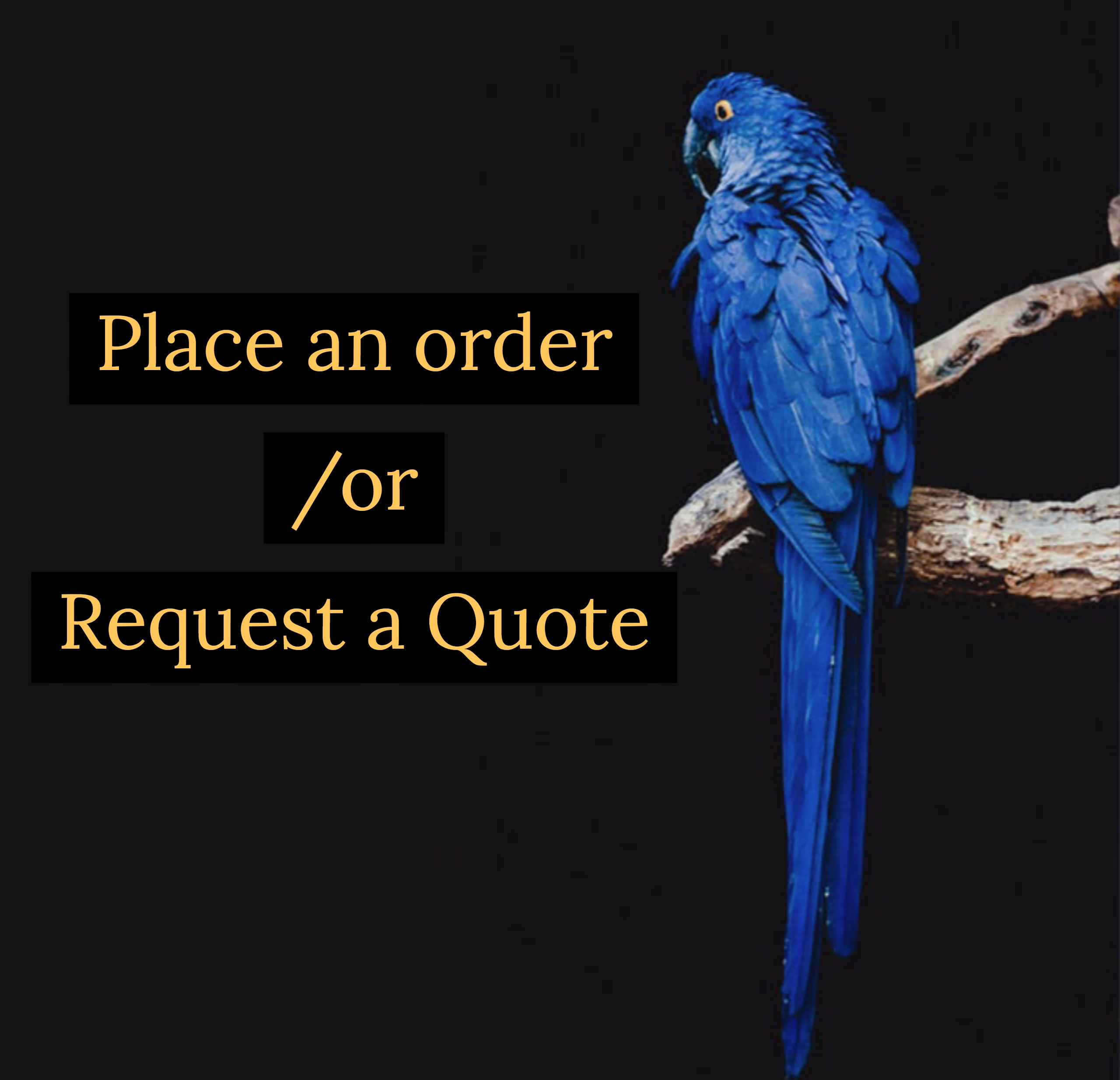 Order or Quote?